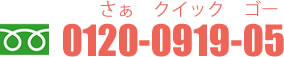 0120-0919-05